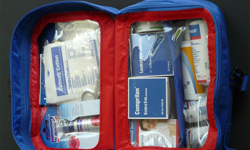 travel pet accessories first aid kit - 4 Travel Accessories for Your Pooch When Dropping Your Child at Daycare
